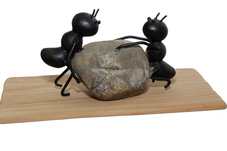 ants-1169349_1920