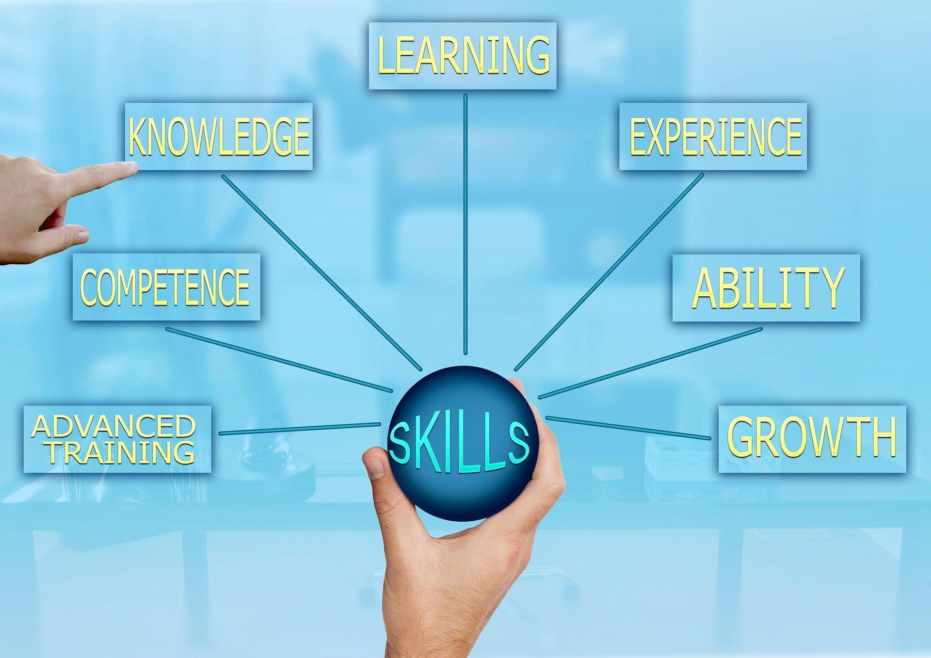 skills-3262172_1920